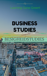 GR11 BUSINESS STUDIES / BESIGHEIDSTUDIES